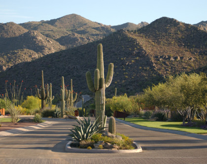 Dove Mountain Community Landscapes